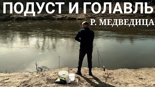 Отчет о рыбалке в саратовской области 2020
