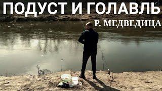 Рыбалка в саратове форум 2020