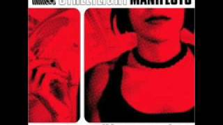 Streetlight Manifesto - Everything Goes Numb + lyrics :)