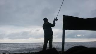 Фидерная ловля на черном море с берега