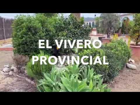 Vivero Provincial. Recorrido por sus instalaciones. Segunda parte. 2020