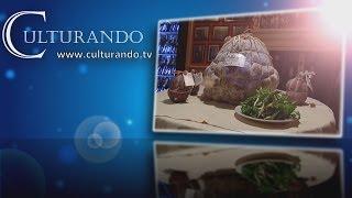 preview picture of video 'Culturando Speciale 56^  Fiera Lonato del Garda'