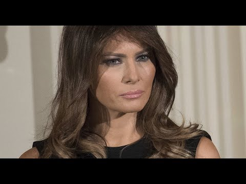 How Did Melania Trump enter US with 'Einstein' visa for those with 'extraordinary ability?
