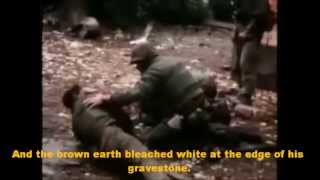 The Grave by Don McLean (VIETNAM WAR)
