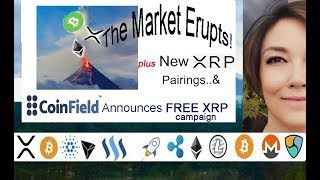 Market Erupts! BCH XRP ETH, CoinField FREE XRP, New OKEX XRP Margin Trade Pairings, Zaif Exchange
