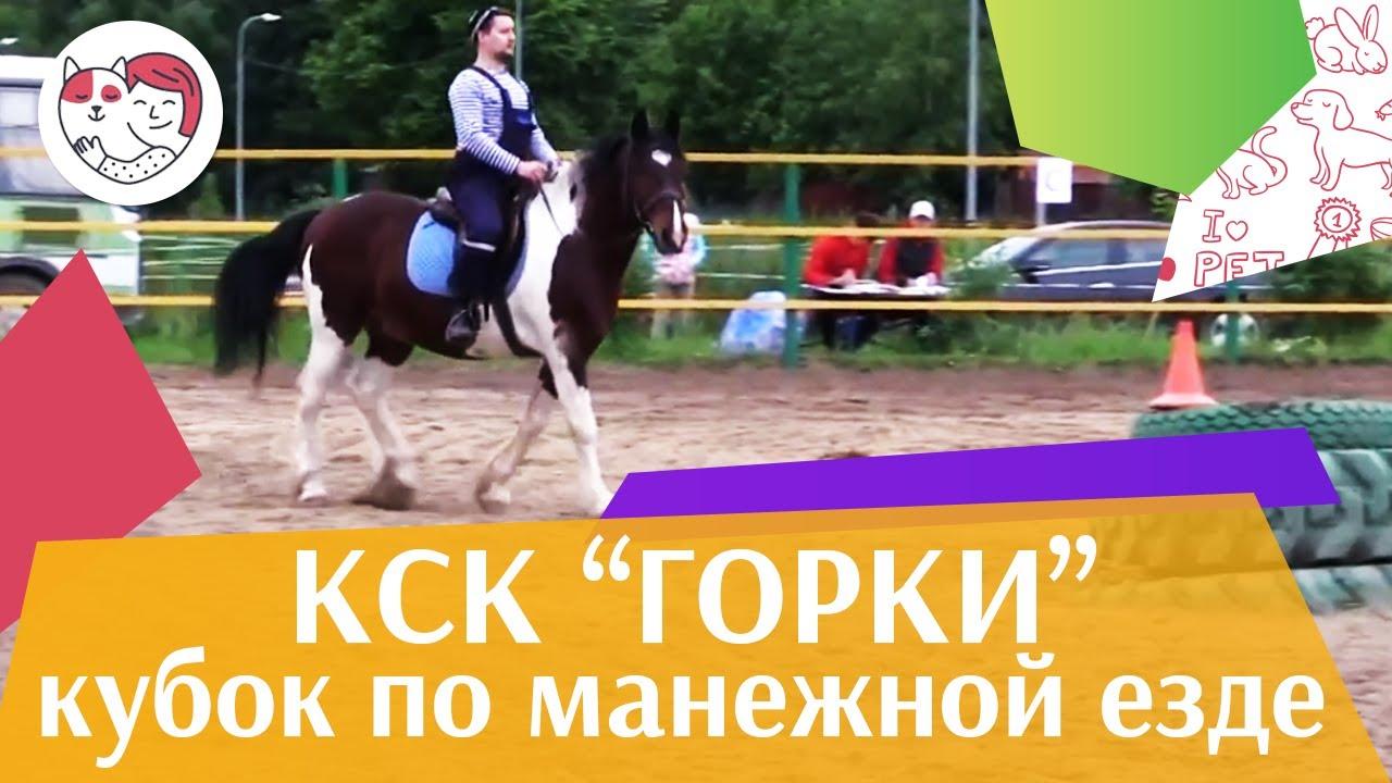 Летний кубок КСК Горки по манежной езде КЮР часть 8 на ilikepet