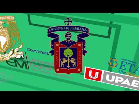 UDEMEX Video