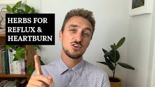 Herbal Medicine For Heartburn, Reflux and GERD