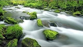 Relaxing  Healing Music 9