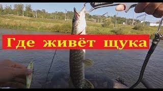 Все о спиненге и рыбалке на реке
