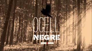 BarraLliure! - Ocell Negre [2013] - Lluna