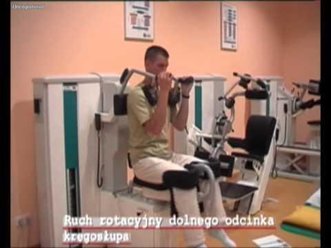 Dikulja krem do masażu dla stawów i kręgosłupa