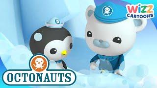 Octonauts | Treading on Thin Ice | Compilation | Wizz Cartoons