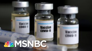 How Close Are Scientists To Having A Coronavirus Vaccine? | The 11th Hour | MSNBC