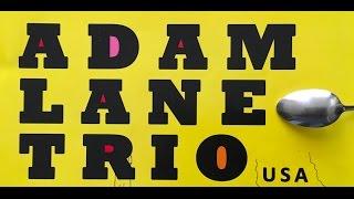 Adam Lane Trio - VinyllaSky set1 01