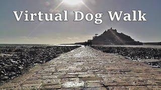 Walk Your Dog TV : Virtual Dog Walk