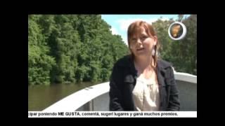 preview picture of video 'Los taxodium que cuidan Villa Paranacito'
