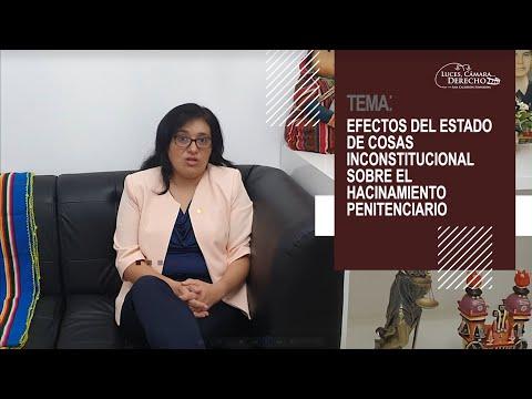 EFECTOS DEL ESTADO DE COSAS INCONSTITUCIONAL SOBRE EL HACINAMIENTO PENITENCIARIO - Luces Cámara Derecho 176