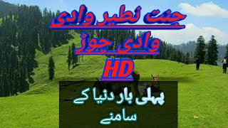 preview picture of video 'Chur Valley kpk Pakistan) Tourism In Pakistan Fist time You See Beautifull Chur Valley'