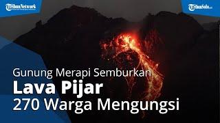 Update Gunung Merapi Semburkan Lava Pijar, 270 Warga Desa Balerante Mengungsi