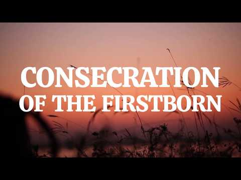 Exodus 13: Consecration of the Firstborn | Bible Story (2020)