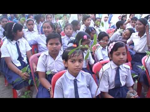 টিফিনের টাকায় ৫০ হাজার গাছের চারা লাগাবে চারঘাটের শিক্ষার্থীরা
