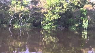 preview picture of video 'Navegando com velocidade nas águas do Amazonas'