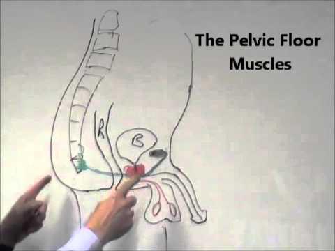 Prostata-Massage Video