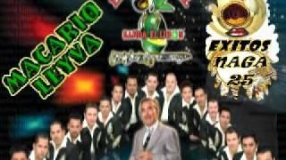 MACARIO LEYVA-LA ORIGINAL BANDA EL LIMON---EXITOS NAGA 25.flv