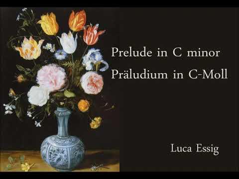 Prelude in C minor/ Präludium in C-Moll - Luca Essig