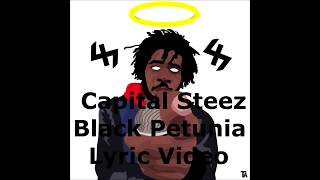 Capital Steez - Black Petunia (Lyric Video)