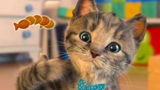 Маленький КОТЕНОК - развлекательное видео для детей /  СИМУЛЯТОР милого котика #ПУРУМЧАТА
