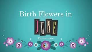 Korean Birth Flowers for June