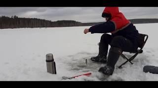 Сезон рыбалки 2020 в свердловской области