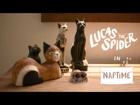 Lucas the Spider in Naptime