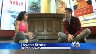 CBS Philly News Segment- Charlotte's Web