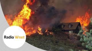 Cetliński: Ustawy chroniące naturę w Kalifornii zagrażają ludziom. W pożarach zginęło już 14 osób