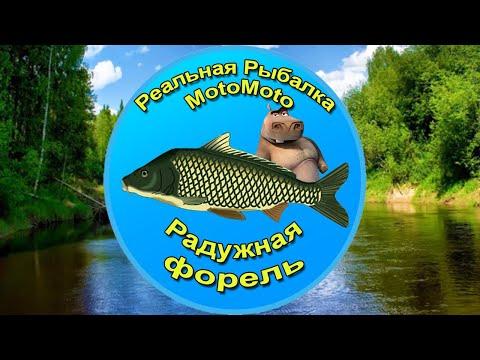 Как поймать Радужную форель на Лесной реке [NEW] | Реальная Рыбалка.
