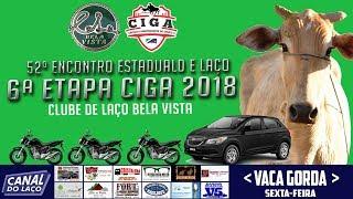 AO VIVO 52ª Encontro Estadual de Clubes de Laço - Clube de Laço Bela Vista | Kholo.pk