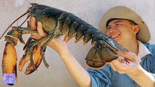 Bắt Tôm Hùm Alaska  Khổng Lồ Ngoài Biển . Cận Cảnh Tôm Hùm To Nhất . Catch Lobster