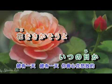 , title : '02-018   花---すべての人の心に花を***金嗓 940912  夏川里美 完整版