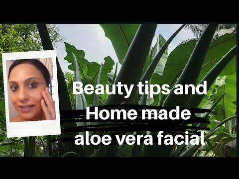 ആഴ്ചയിൽ ഒരിക്കൽ ഇങ്ങനെ ചെയ്തു നോക്കു/homemade aloe vera gel and facial/fresh glowing skin/ Vlog:11