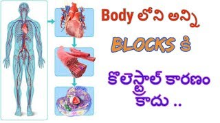 clean all types of blocks from human body | అన్ని రకాల Blocks కి పరిష్కారం  || Dr khader vali telugu