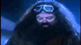 Harry Potter Y La Piedra Filosofal Primer Parte