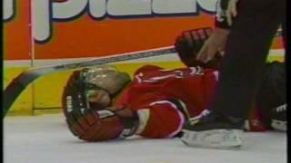 Tie Domi/Scott Niedermayer incident - 2001 playoffs