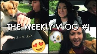 THE WEEKLY VLOG #1 | MoreTBC