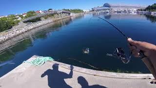 Рыбалка в норвегии на спиннинг