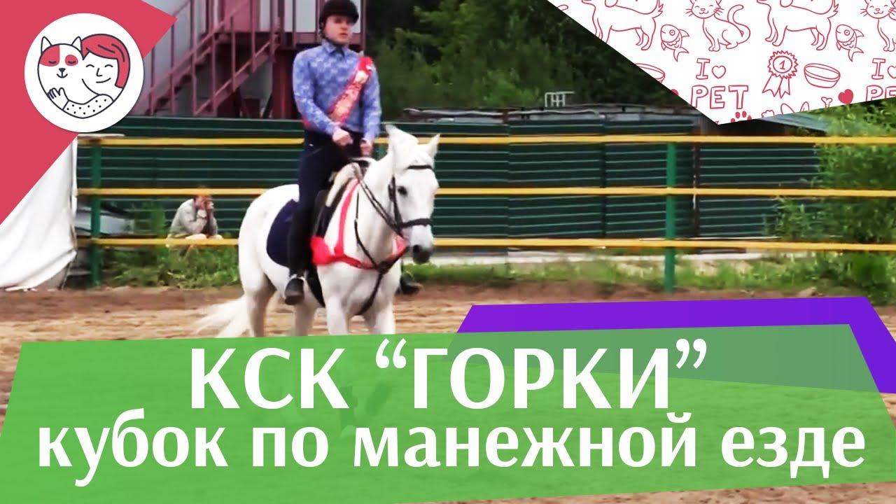 Летний кубок КСК Горки по манежной езде КЮР часть 3 на ilikepet