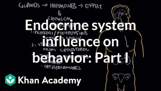 Endocrine system and influence on behavior - Part 1 | Behavior | MCAT | Khan Academy