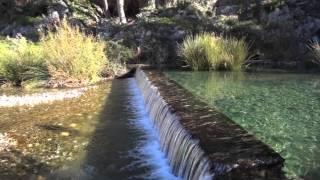 Video del alojamiento Campo El Castillejo Ecoturismo